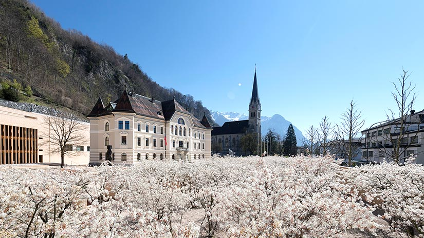 Liechtenstein und das digitale Original